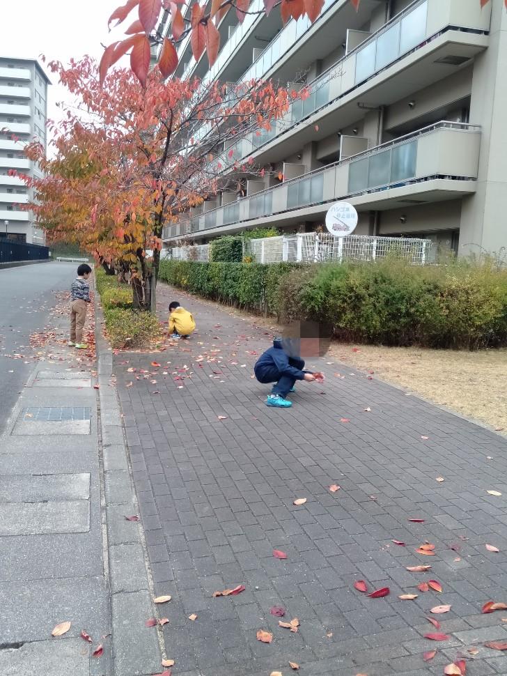 紅葉 落ち葉を集める少年たち